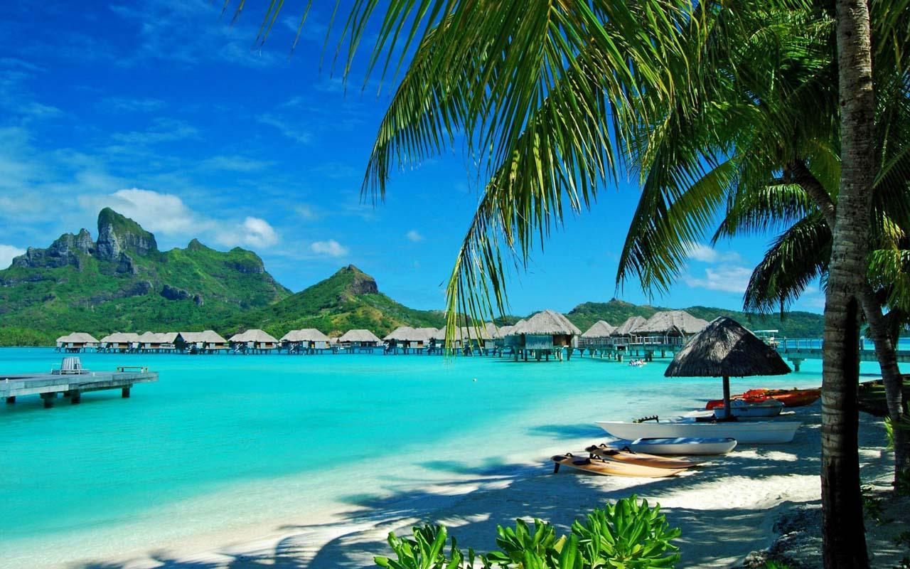 com.handInHand.Hawaii_1_exdV (1)